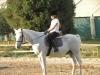 Elisa a cavallo