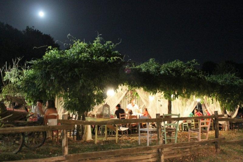 Area picnic roma ristorante fattoria agriturismo il casale sul fiume treja mazzano romano - Area tavoli picnic barbecue roma ...