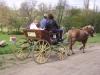 passeggiata in carrozza