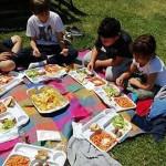 picnic-cestino